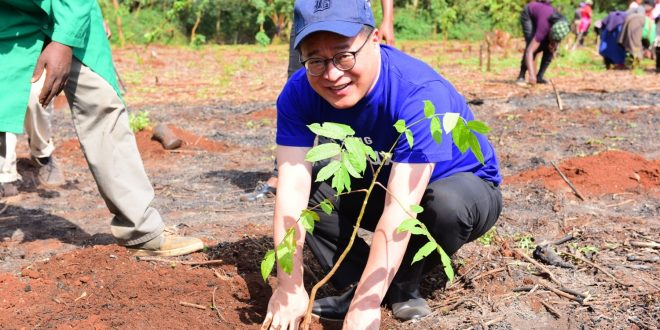 Samsung boosts Kenya's forest cover with planting more trees at Karura Forest