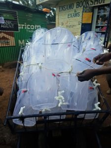 Business: Innovative Kenyan traders have already started deliveries for hand washing packages