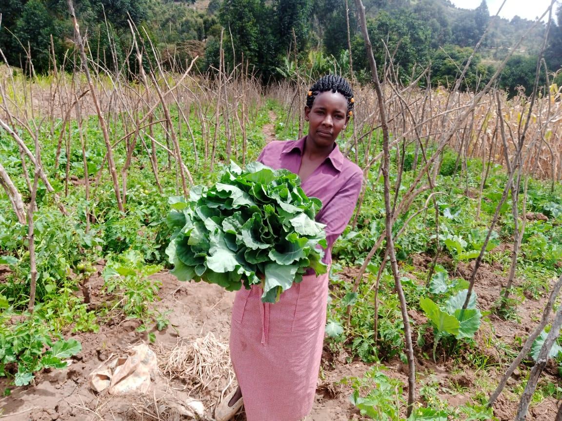 Jacinta ndunga with her kales harvest. PHOTO: Harriet Owalla