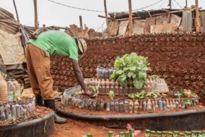 A farm made using recycled bottes by Slums Going Green and Clean, a community based organization in Kibra. Photo: Ismael Photography