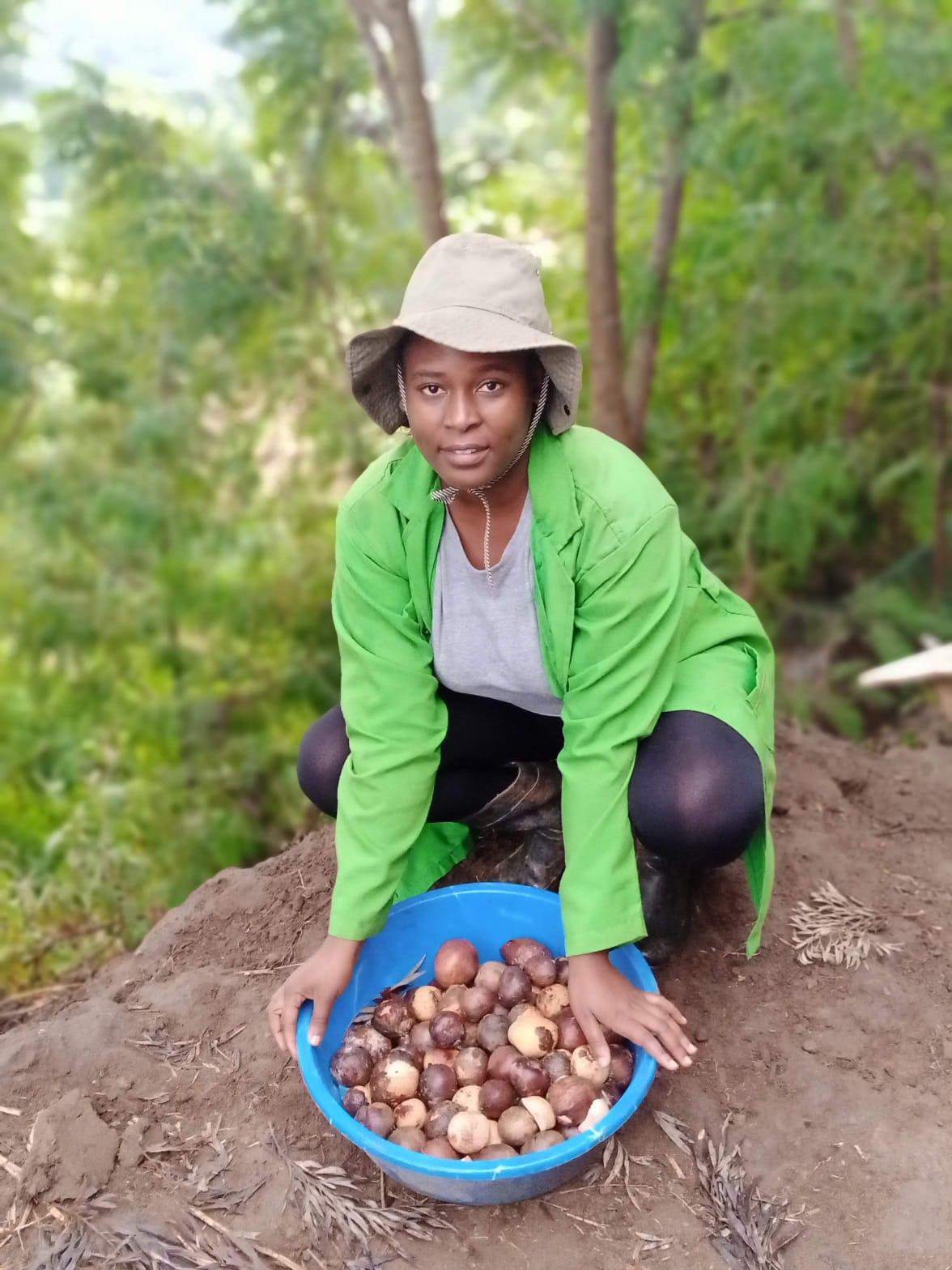 Patricia Kombo with avocado seedlings. PHOTO: Harriet Owalla.